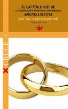 """El capítulo VIII de la Exhortación apostólica pos-sinodal """"Amoris laetitia"""""""
